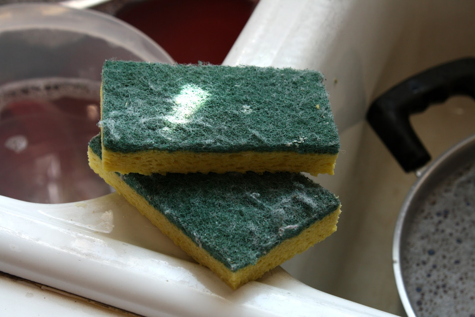 Best Kitchen Cleaning Sponges