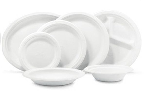 disposable tableware while camping